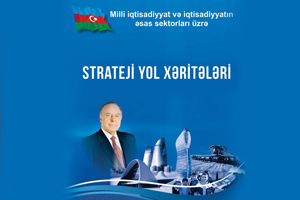 The results obtained in accordance with the implementation of the Strategic Roadmap are disclosed